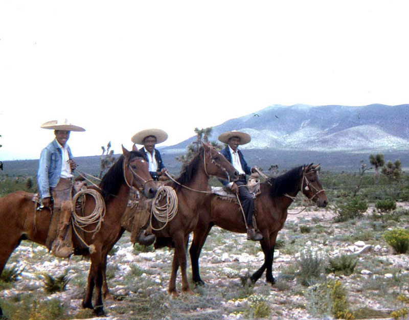 The Vaqueros' Story | Texas State History Museum
