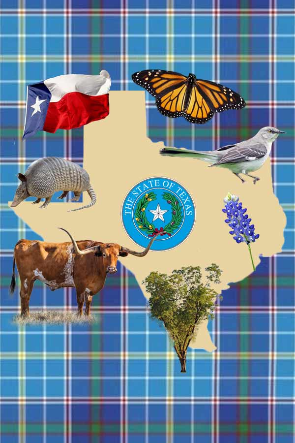 Various Texas symbols on top of an outline of Texas against a plaid blue background