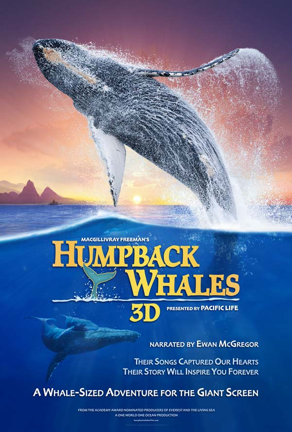 Humpback Whales in 3D to make a splash Feb. 13 at the Bullock's renovated IMAX Theatre