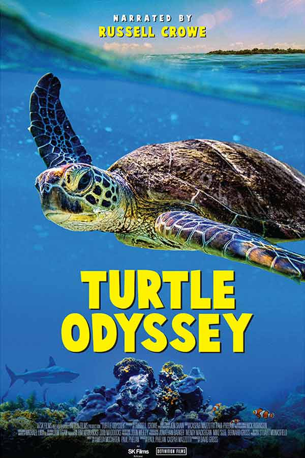 Sea turtle swimming in the ocean, Turtle Odyssey 2D