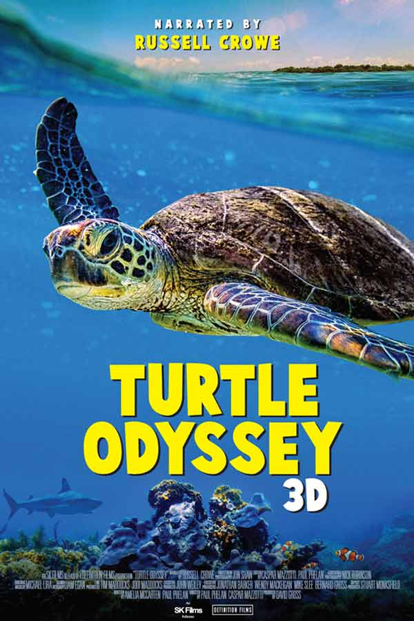 Sea turtle swimming in the ocean, Turtle Odyssey 3D