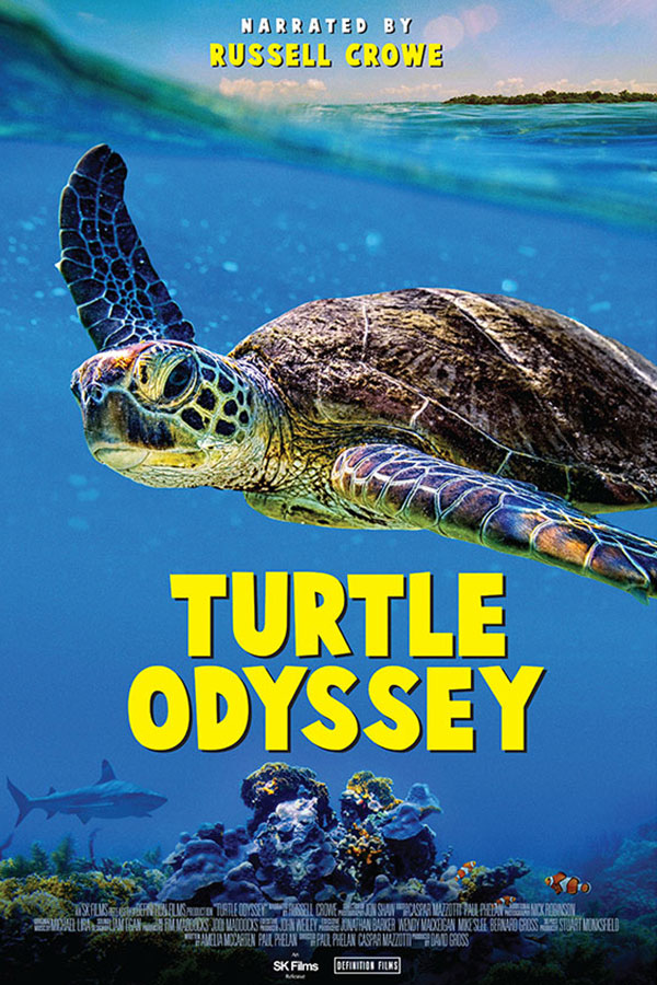 Turtle Odyssey banner image and title text